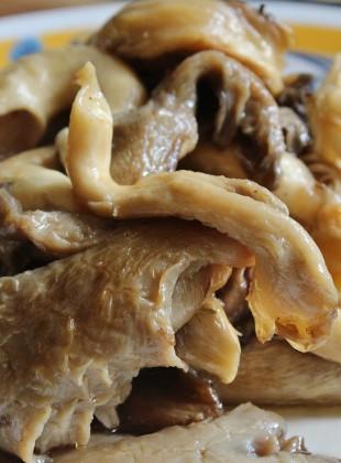 pleurotes king oyster vegan  (2000x1312)