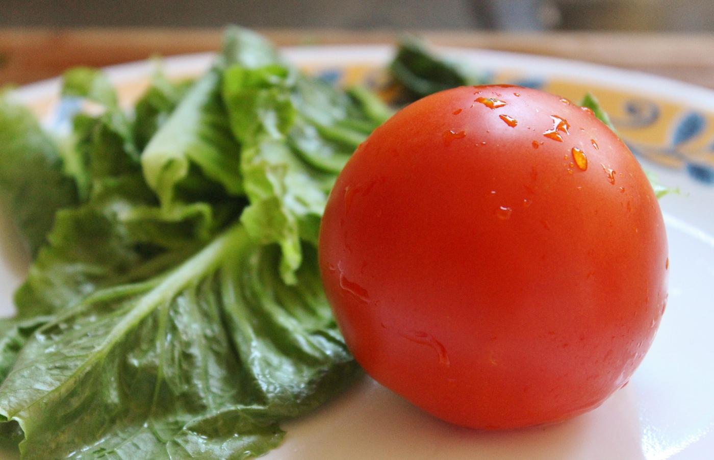 tomates jardin (1400x902)