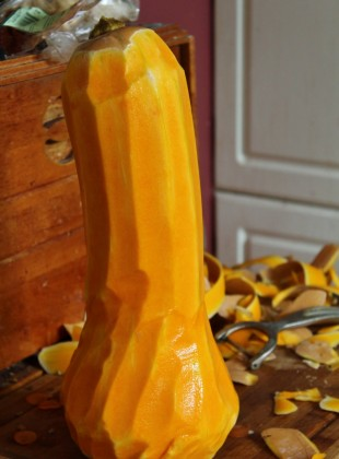 courge butternut (800x1200)