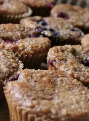 muffins quinoa bleuets citron  (1200x634)