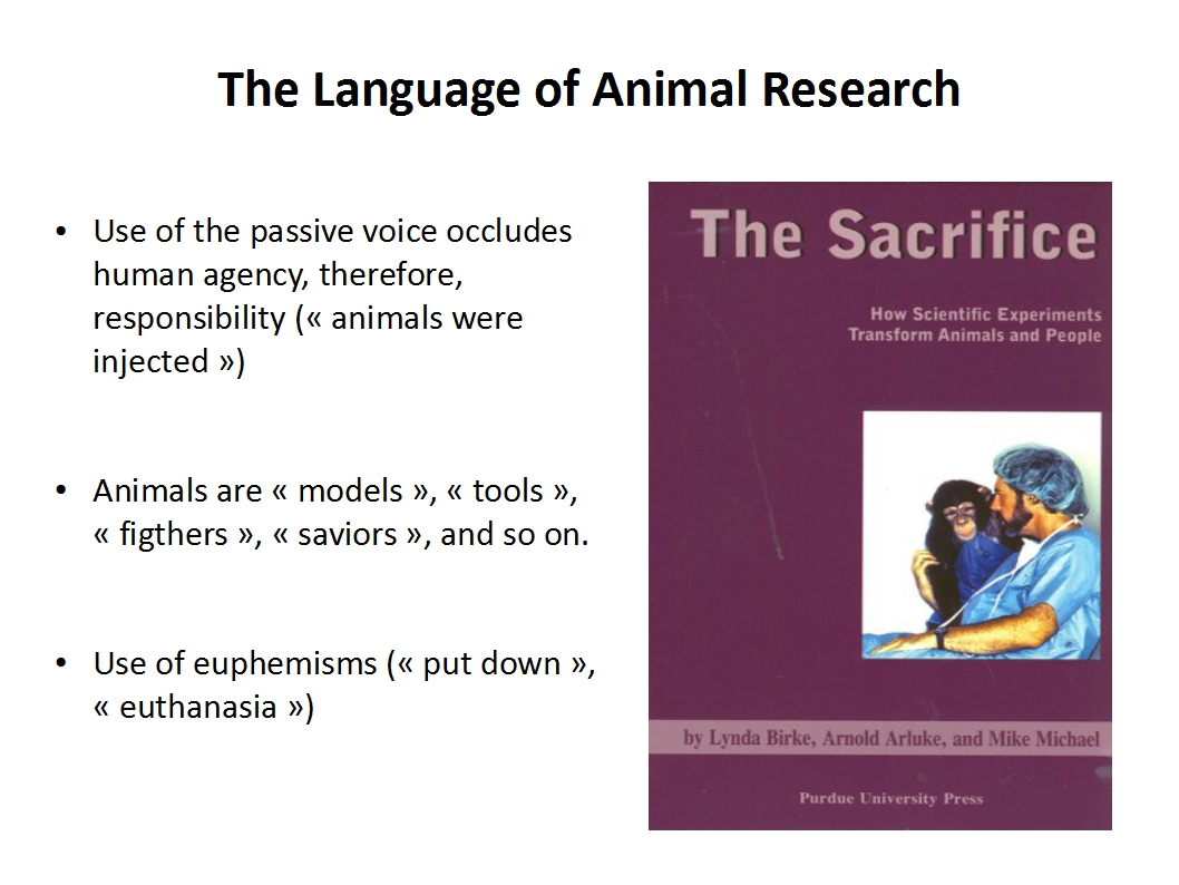 ethics of animal testing and experimentation